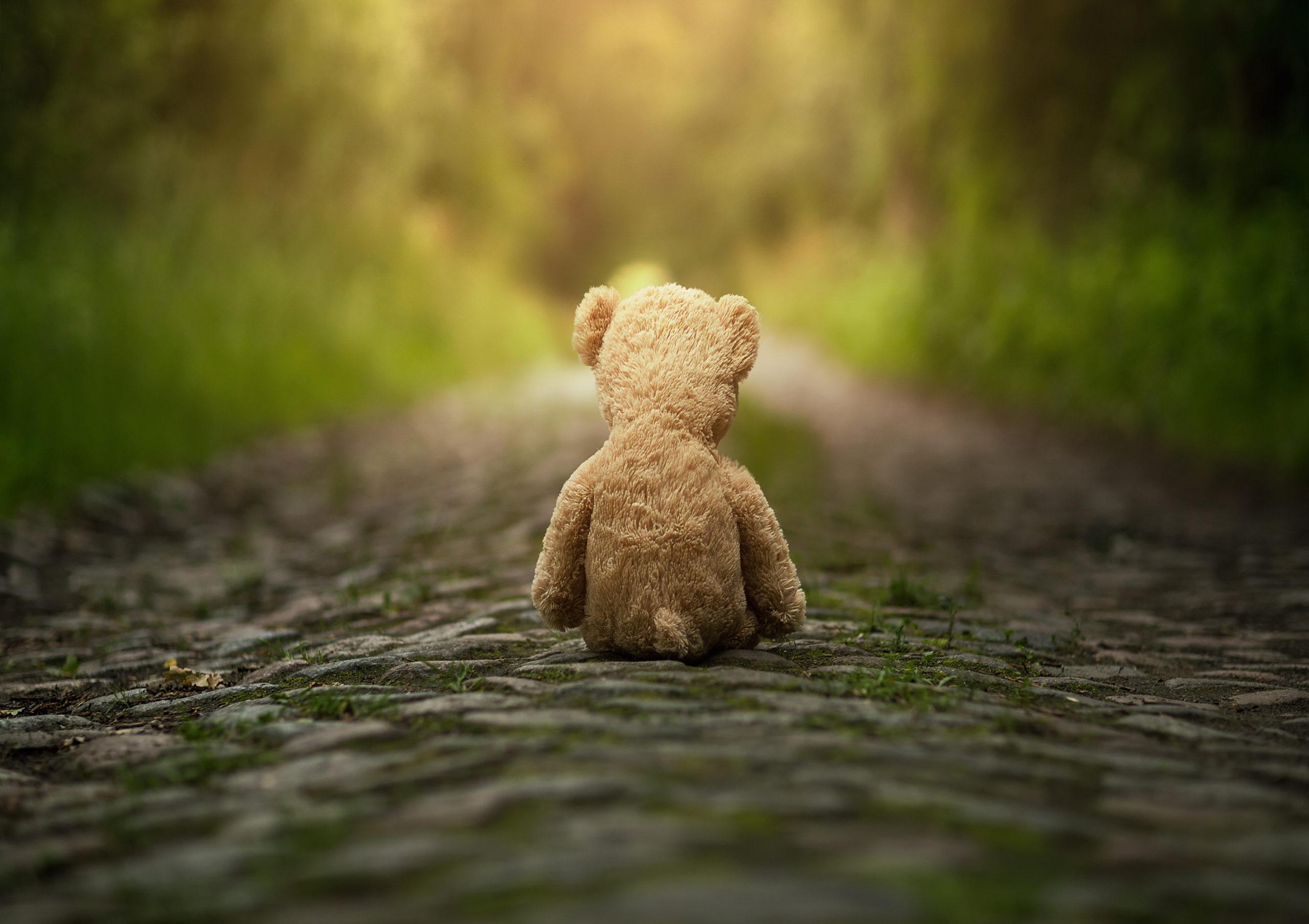 Erziehungsberatung - Teddy